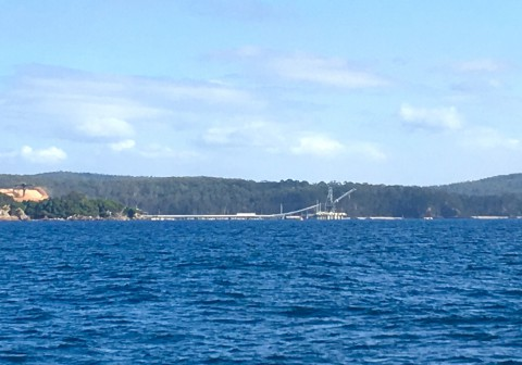 After entering Eden you will observe the woodchip loader ahead and the Navy jetty behind –anchor behind both