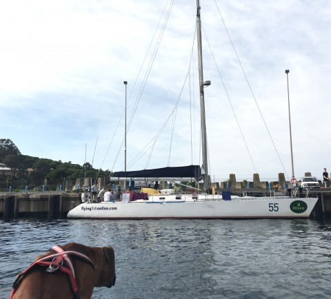 Sydney–Hobart boat Arctos fuelling up on the fuel dock before stepping out into a gale